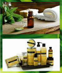 Pharmacopia Verbena